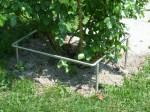 Schutz für Rosen aus Edelstahl ,kein beschädigen durch Rasenmäher, ca. 45 X 45 cm., Bestellnummer 911