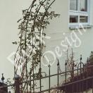 Klettergerüst für Rosen und anderes, Material Eisen geschmiedet, verzinkt und lackiert